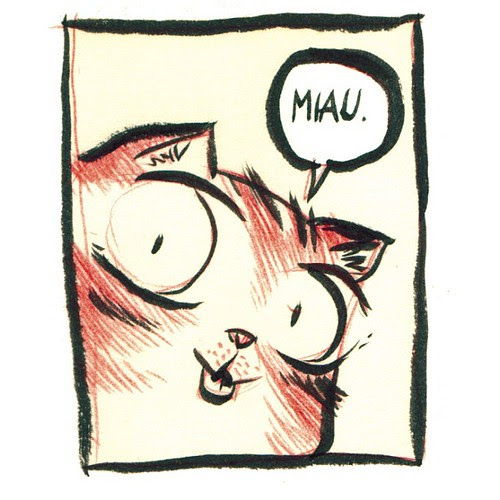 Miau. by 10paezinhos