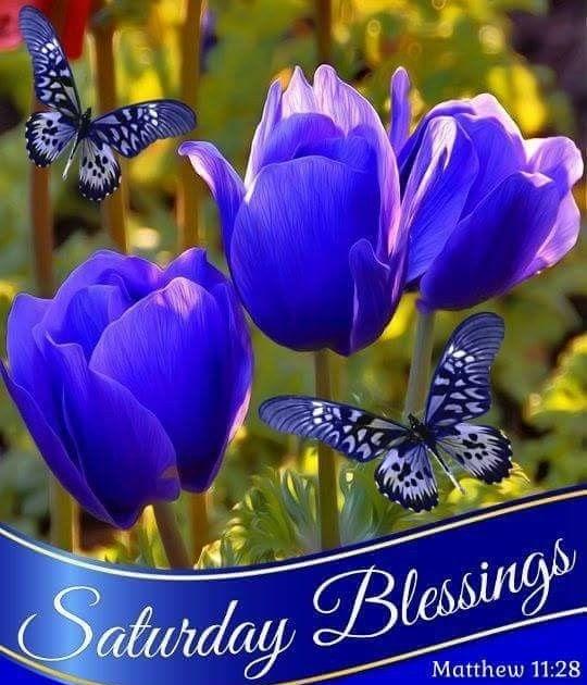 20+ Fantastic Ideas Saturday Blessings Kjv Scriptures Pictures - Poppy  Bardon | Blessings Pictures