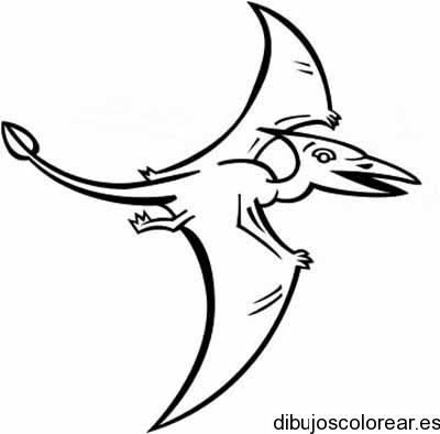 Dibujo De Dinosaurio Volador