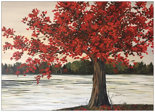 Red Maple Tree Painting Postcard 18 James Street