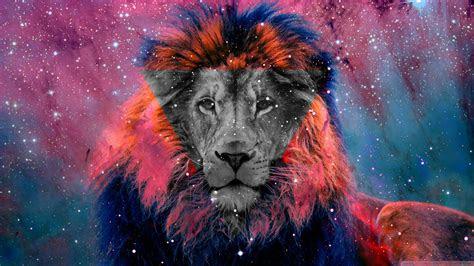 lion quotes  galaxy quotesgram