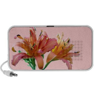 Double Daylilies Pink-Orange Doodle Mini Speakers doodle