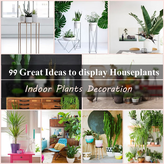 99 Great Ideas to display Houseplants | Indoor Plants Decoration | Balcony Garden Web