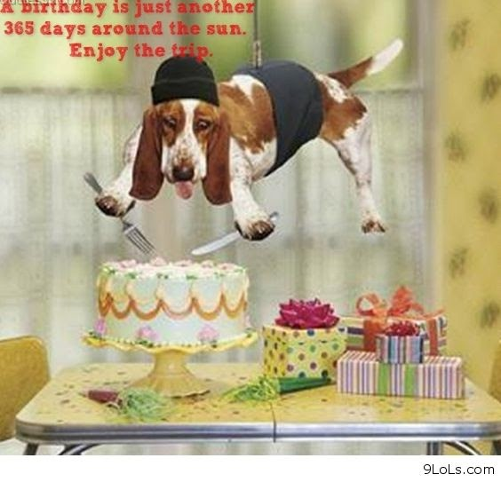 Funny Quotes 2013: Birthday Funny Quotes