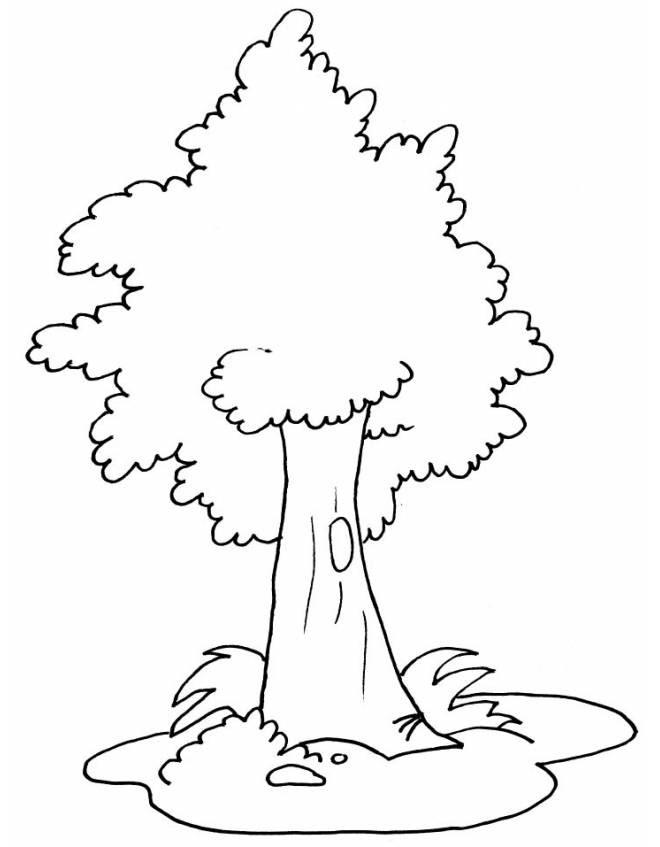 Disegno Di Albero Da Colorare Per Bambini Disegnidacolorareonlinecom