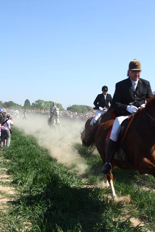 paardenprocessie hakendover 2011