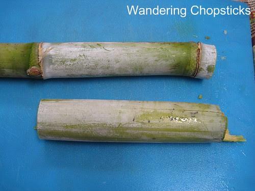 Sugarcane 7