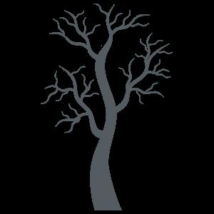 árbol Sin Hojas Vinilo Decorativo De La Colección árboles