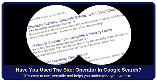 Use the SITE: Operator as a Website Tool