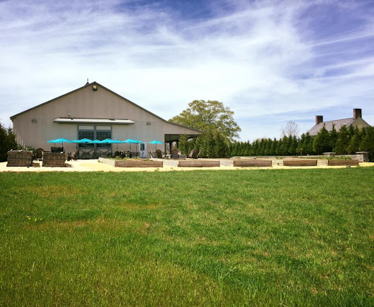 Monmouth County Wineries: Fox Hollow Vineyards Review