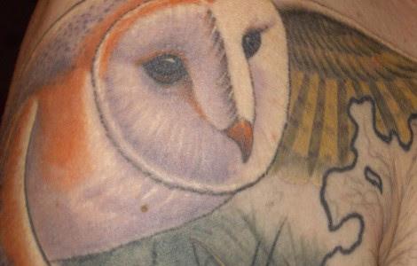 Barn Owl Tattoo Design Tattoos Designs Ideas