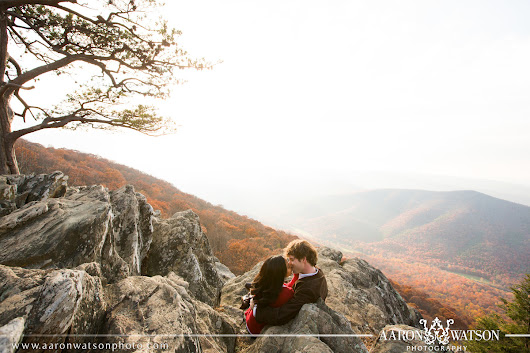 Fall Portrait Sessions in Charlottesville