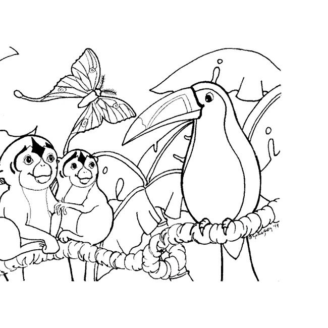 460 Free Printable Coloring Pages Rainforest Animals , Free HD Download