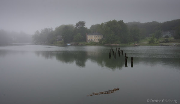 quiet, misty, reflections
