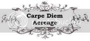 Carpe Diem Acreage