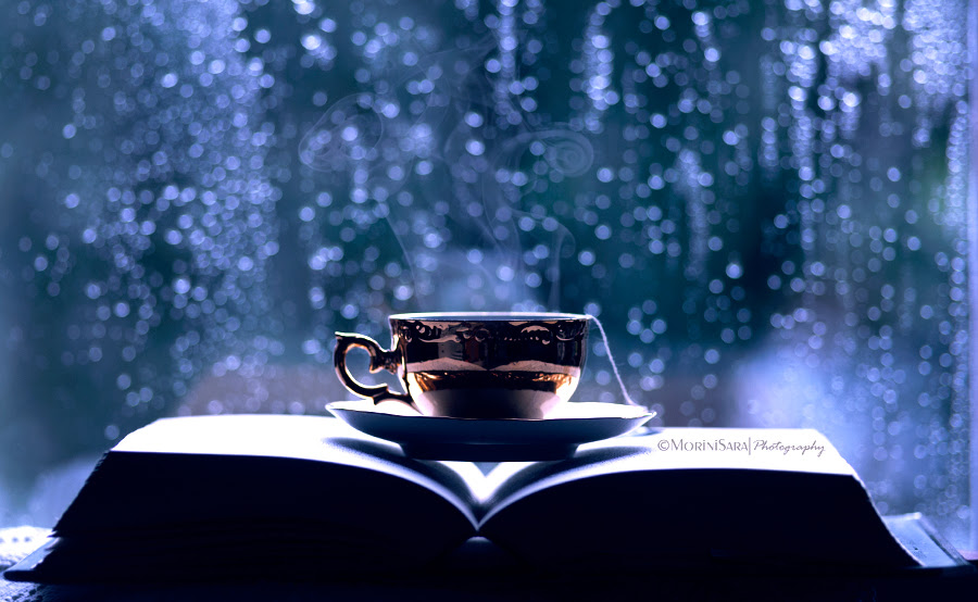 Image result for book photo rain