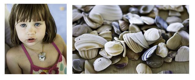 seashell jewelry 2
