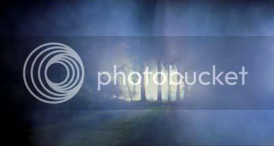 http://i298.photobucket.com/albums/mm253/blogspot_images/Raaz/PDVD_019.jpg