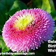 Funny Belated Happy Birthday Wishes Messages Sms
