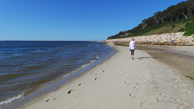 Monomoy National Wildlife Refuge, Chatham, MA
