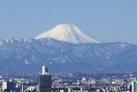 赤プリ富士山2