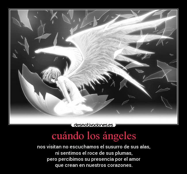 Best Imagenes De Angeles De Amor Con Frases Image Collection