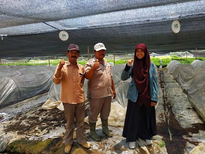 Agroteknologi Universitas Lampung (Wahyu) oleh - ilmukehutanan.xyz