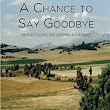 Book review of A Chance to Say Goodbye