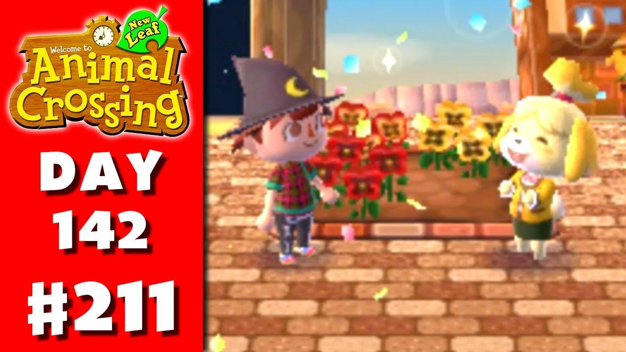 Animal Crossing: New Leaf - Part 211 - Flower Bed ...