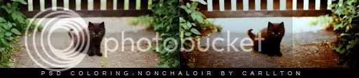 http://i757.photobucket.com/albums/xx217/carllton_grapix/psd_coloring_nonchaloir_by_carllton.jpg