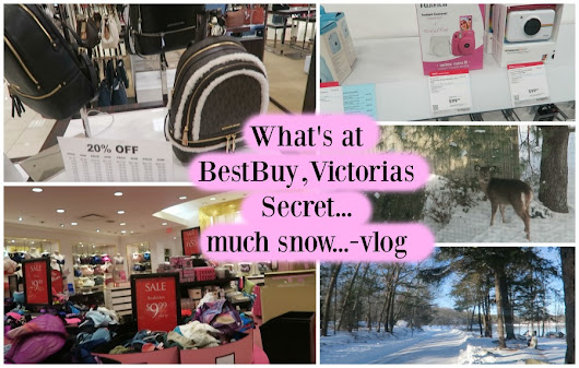 AT Victoria's Secret, Best Buy, Michael Kors- Macy's and much snow-JANUARY VLOG