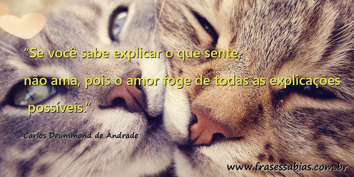 Frases Sábias Carlos Drummond De Andrade
