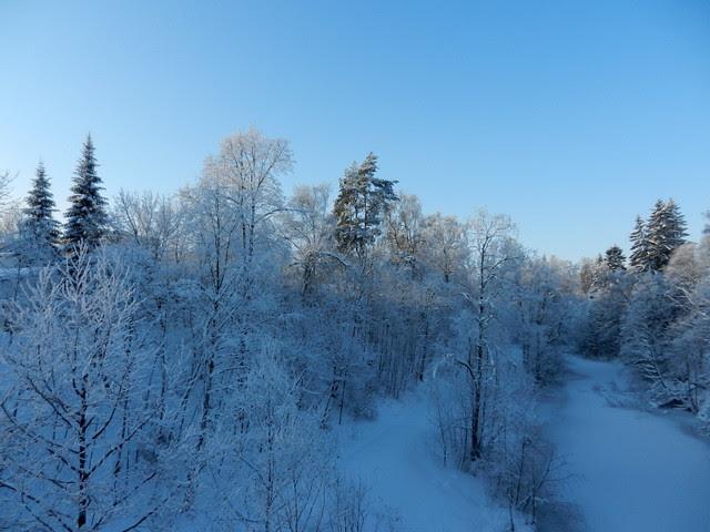 Winter_1_2012