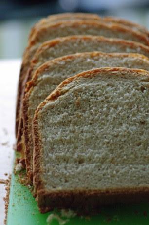 Bread Machine Whole Wheat Bread Low Fat) Recipe - Food.com