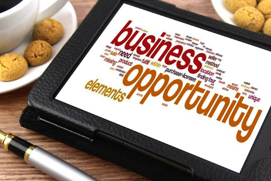 Business Opportunity - Become Independent Representative