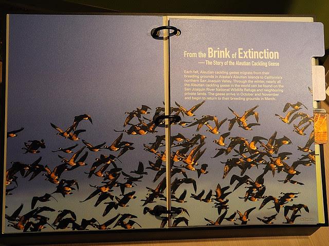 DSCN0524 Visitor Center, San Luis National Wildlife Refuge