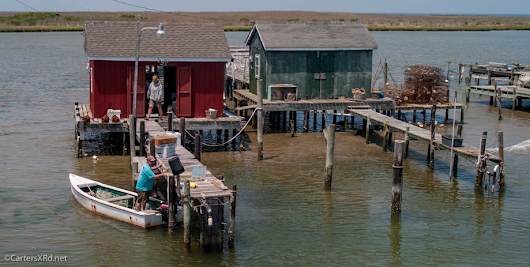 Tangier Island, VA May 2014