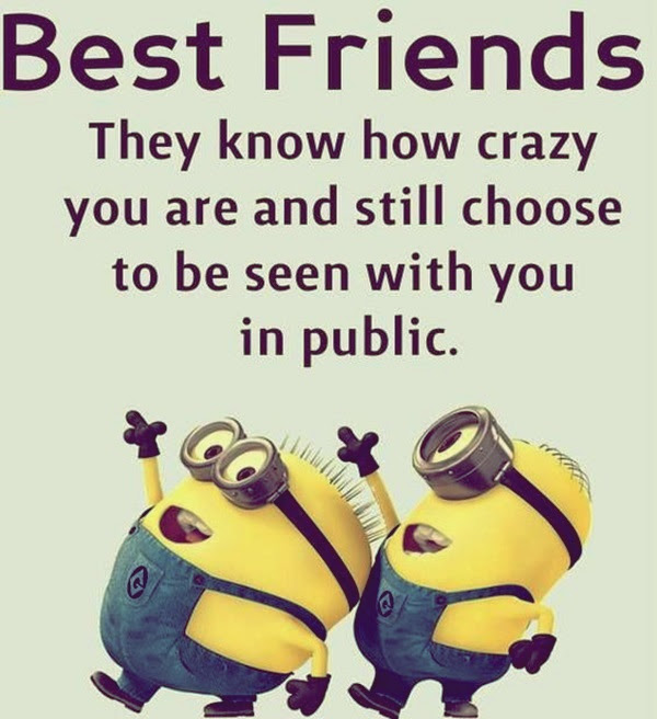 Dumbass Best Friends Quotes With Pictures (7)