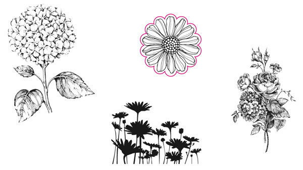 Best-of-flowers
