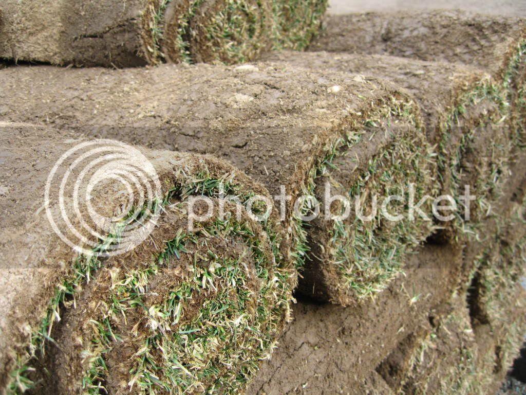 Grass roll-ups