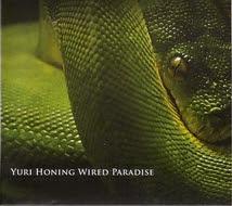 Yuri Honing Wired Paradise  - 'Temptation'