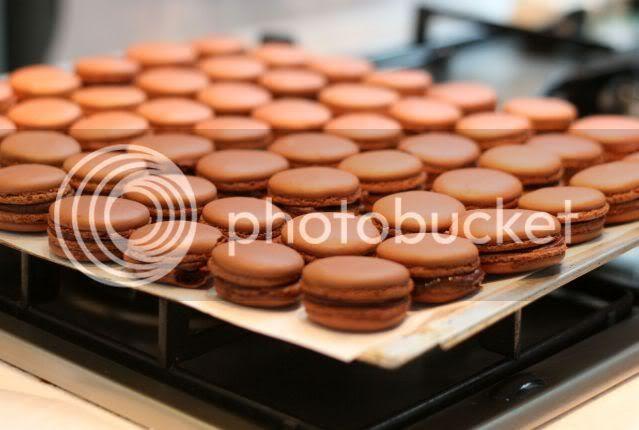 Magical Macarons