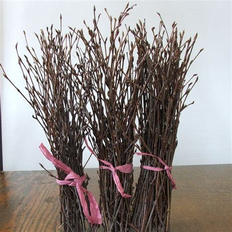 Natural BIRCH Twigs rustic decor Event Centerpieces.