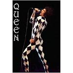 Queen Leotard Freddie Mercury Leotard Poster Poster Print, Size: 24 x 36, Black