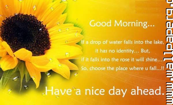 Hd Exclusive Good Morning Have A Nice Day Photo Download Good Quotes