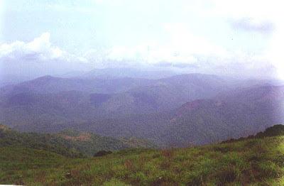 Rainforests of Pushpagiri wildlife sanctuary and forested hills of Hassan and Dakshina Kannada as seen from Girigadde below Kumara Parvata peak in Western Ghats