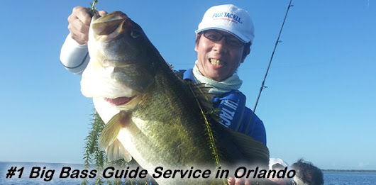 Best Orlando Fishing Guides in Florida | Orlando Fishing Guide