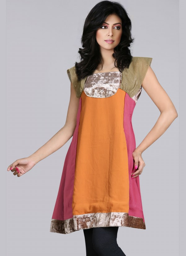 Indian-Trendy-Style-Tunic-Kurti-Designs-2013-Indian-Tunic-Kurti's-Fashionable-Dress-
