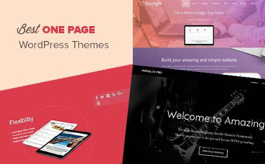 24 Best One Page WordPress Themes (2017)