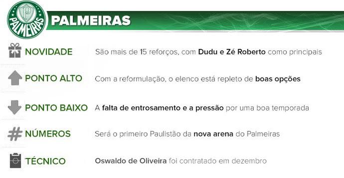 Palmeiras guia do paulistão (Foto: Arte esporte)